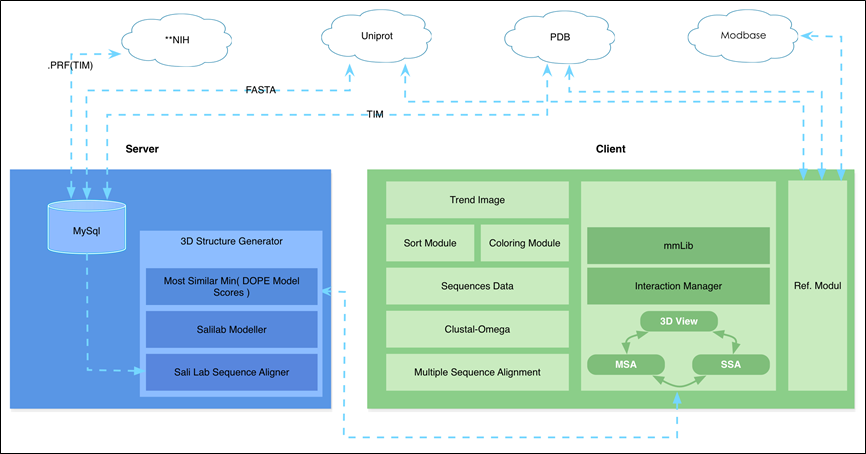 Client/Server system architecture, with access to NIH, Uniport, PDB, and Modbase web services.